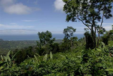 45 ACRES - Ocean View Acreage With Many Building Sites, Rivers, and Waterfalls!!!!