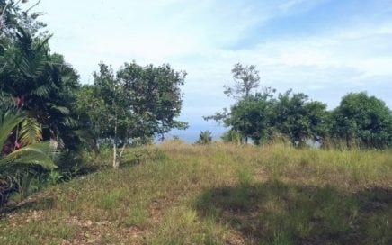 19 ACRES – Ocean View Farm With Multiple Building Sites Walking Distance To The Beach!!!