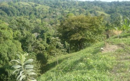 9.8 ACRES – Ocean View Acreage With 3 Building Sites 10 Min From Pavones!!!
