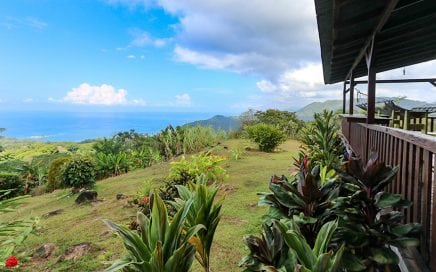 5 ACRES – 6 Bedroom Lodge With Unbelievable Ocean Views And Plenty Of Room To Expand!!!!