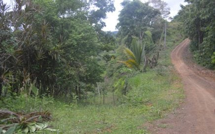 2.47 ACRES – Affordable Lot With Small Ocean View Near Pavones!!!