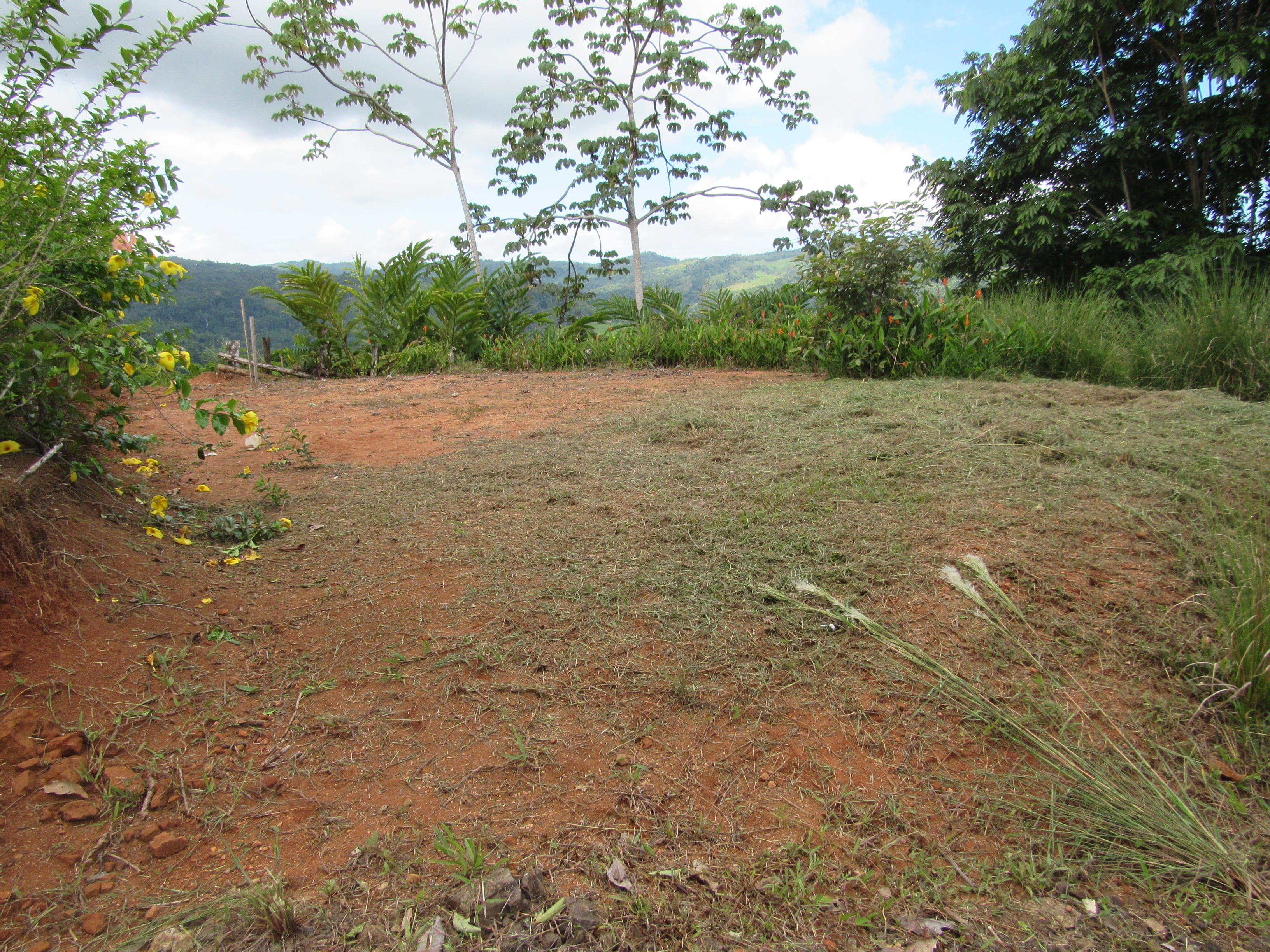 2.75 ACRES - Amazing Mountain View Property With Multiple Building Sites, Countless Fruit Trees!!!