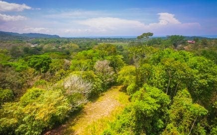 2.3 ACRES – Ocean View Property With 2 Wheel Drive Access!!!