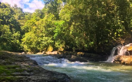 3.5 Acres Rainforest Property, Jungle feel, Waterfalls surrounded, no Restrictions!