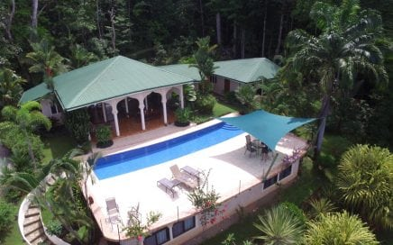 1.75 ACRES – 4 Bedroom Ocean View Home With Pool Surrounded By Jungle!!!