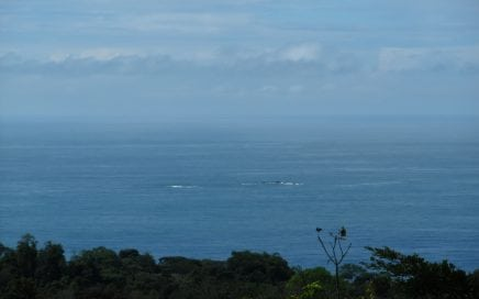 1.8 ACRES – Ocean View Lot With View Of Ballena Islands And Great Access!!!