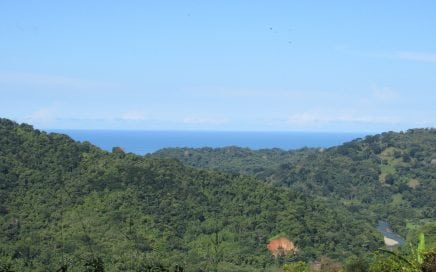 9 ACRES – Ocean View Property With Creek, Fruit Trees, Mulitple Building Sites, Open Acreage!