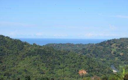 9 ACRES – Ocean View Property With Creek, Fruit Trees, Mulitple Building Sites, Open Acreage!