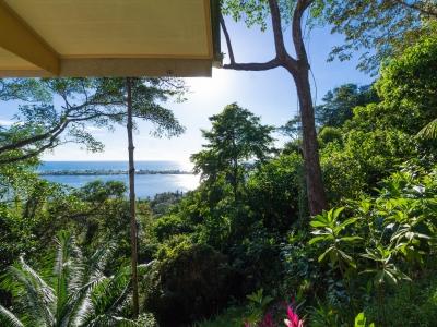 1.36 ACRES - 2 Bedroom Front Ridge Ocean View Home Plus Second Ocean View Building Site!!!