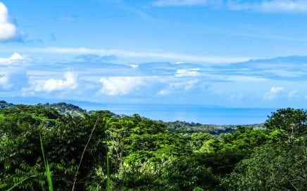 1.41 ACRES – Ocean View Property With Privacy And Multiple Building Areas!!!