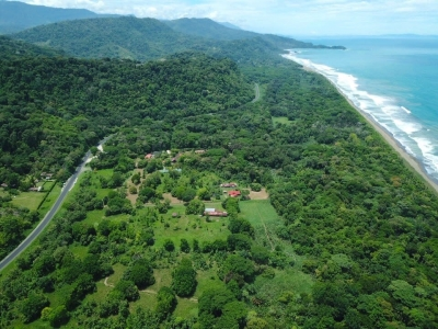 31 ACRES - Flat Developable Acreage With Highway Frontage Just 200 Meters From The Beach!!!!