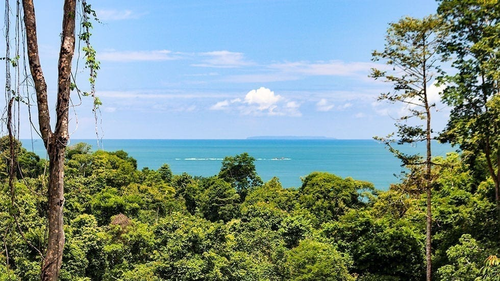 1.25 ACRES - 3 Bedroom Luxury Ocean View Home With Pool In Gated Community!!!