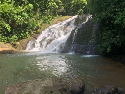 86 ACRES - Amazing 90% Usable Farm Plus River And 7 Waterfalls!!!