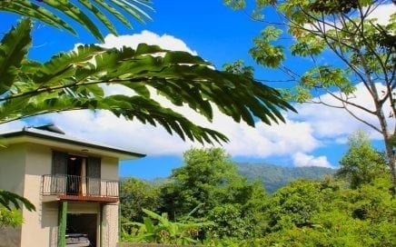 3.81 ACRES – 1 bedroom Ocean View Home Plus Additional Building Sites!!!