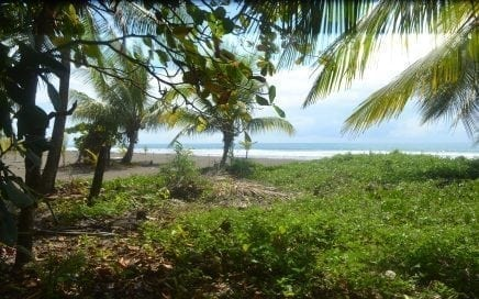 1.2 ACRES – Amazing Beachfront Property With Concession Ready For Dream Home Or Business!!!