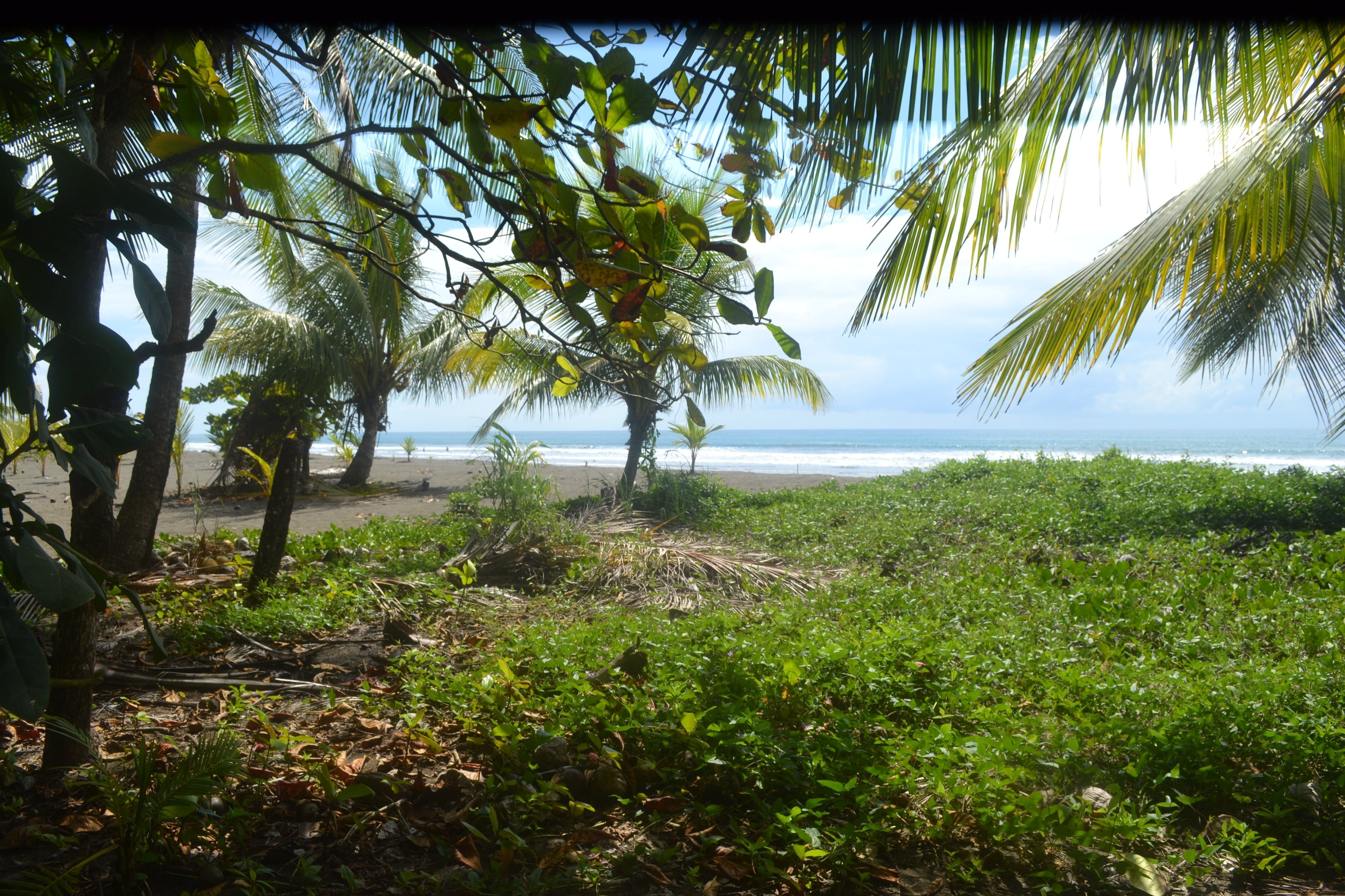 1.2 ACRES - Amazing Beachfront Property With Concession Ready For Dream Home Or Business!!!