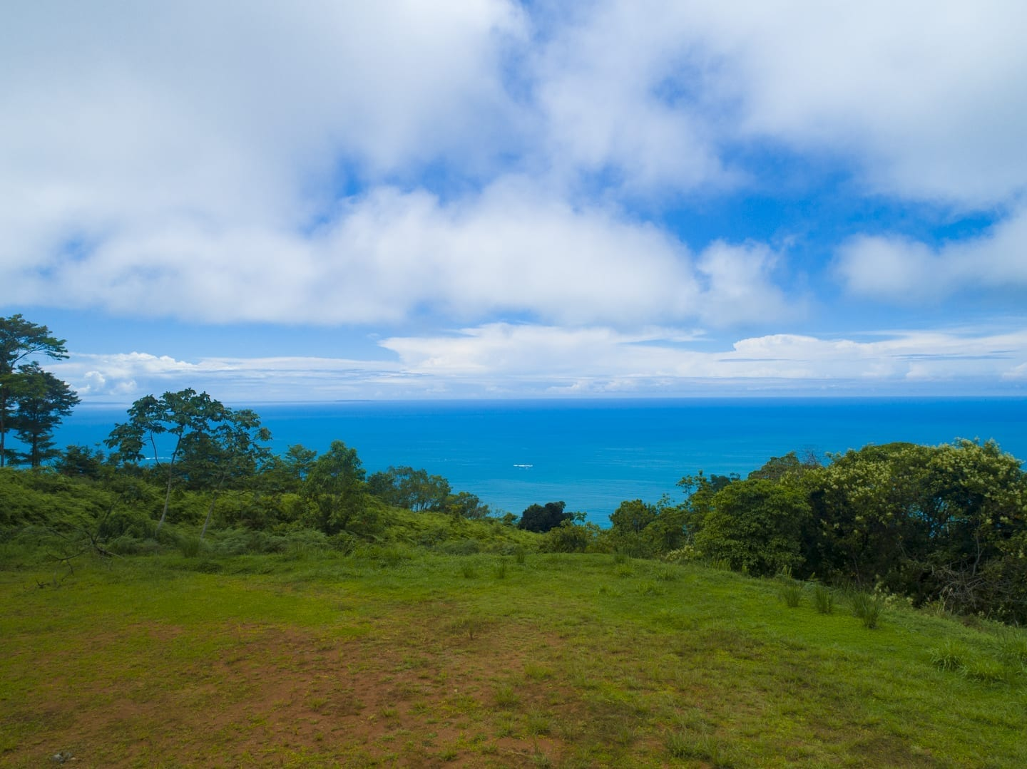 2.16 ACRES - Beautiful Ocean View Property With Huge Building Site Located In Costa Verde Estates!!