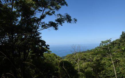 3 ACRES – Private Ocean View Property in Upscale Costa Verde Neighborhood