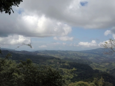 2.45 ACRES - Magical Panoramic Ocean, Valley, And Jungle Views Along A Creek With Waterfall!!!