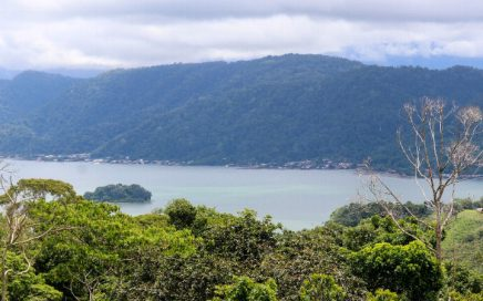 42 ACRES – Ocean View Property With 2 Homes, Creeks, Fruit Trees, 10 Min From Golfito!!
