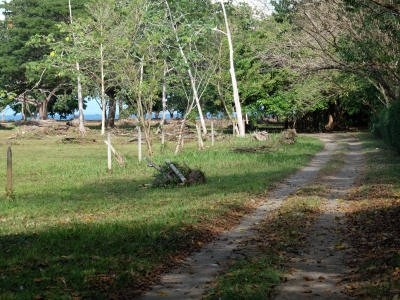1 ACRE - 1 Bedroom Home Plus Guest Cabin On Titled Land Walking Distance To Beach And Point Break Surf!!