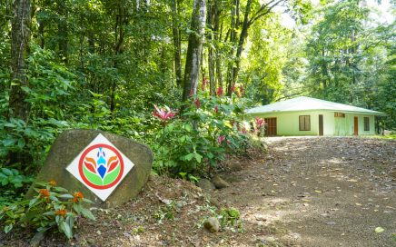 7.5 ACRES – 30 Room Retreat Center On Jungle Acreage With River Perfect For Education, Yoga, Wellness!!