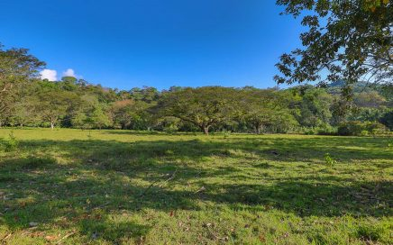 50 ACRES – Flat And Usable Commercial Acreage With Over 500 Meters OF Highway Frontage!!!