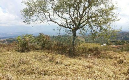 24 ACRES – Open Rolling Pasture With Natural Springs And Great Mountain Views!!!