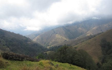 409 ACRES – Mix Of Rainforest And Pasture With Streams And Amazing Mountian Views Perfect For Conservation!!!