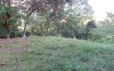 1.29 ACRES – Mountain View Property In Gated Community With Creek At A Great Price!!