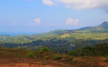 5 ACRES – Incredible Panoramic Ocean And Mountian View Property In gated Community!!!!