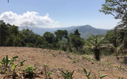 6 ACRES – Versatile land with privacy, easy access, multiple building sites and open views