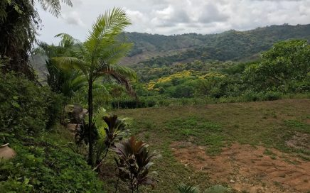 0.76 ACRES – Private Land With Ocean View, Privacy, Infrastructure in Place