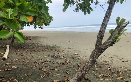 2.5 ACRES – Incredible Beachfront Property On Playa Matapalo With Concession!!!