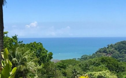 5.3 ACRES – Ocean View Property With Creeks And Multiple Building Sites!!!