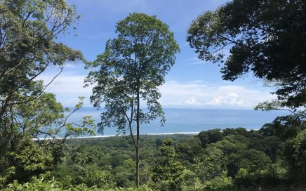 12 ACRE — 4 Bedroom Home on One Site Plus Another Prime Ocean View Building Site!!!