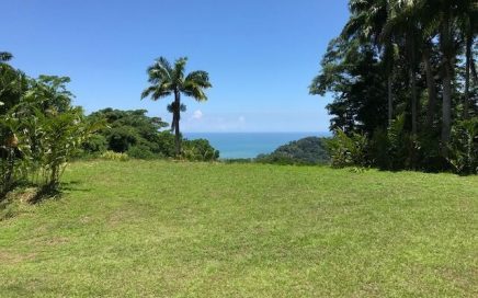 1.35 ACRES – Ocean View Property With Creeks On Both Sides And Good Access!!!