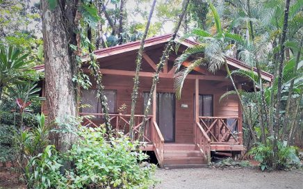 1.8 ACRES – 6 Cabin Income Producing Property With Pool And Room To Expand!!!