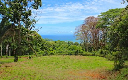 4.8 ACRES – Very Usable Ocean View land With 3 Building Sites, Creek, And Great Access!!!