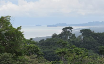 4.1 ACRES – Beautiful Property With Ocean View, Creek, Fruit Trees, In Natural Jungle Settling!!!!