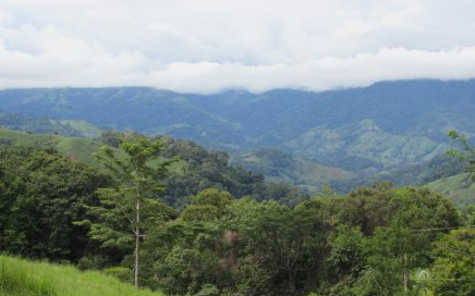0.64 ACRES – Mountain View Property Located In Lagunas With Good Access And Legal Water!!!