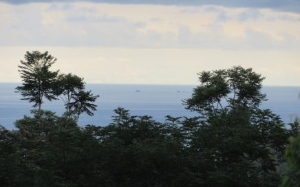 4.47 ACRES – Private Property With Ocean And Mountian View And Creek Access!!!
