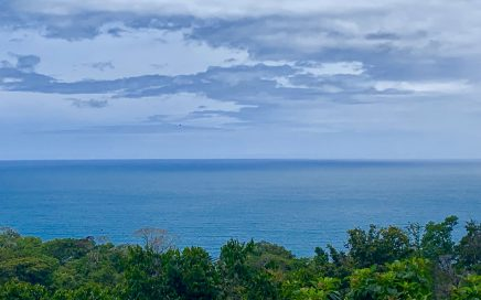 9.9 ACRES – Ocean View Property With All Year Creek And Waterfall!!!!