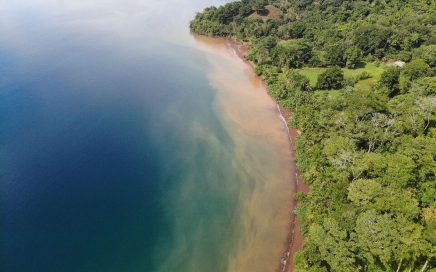 67 ACRES – Amazing Beachfront Acreage On The Calm Gulfo Dulce!!!