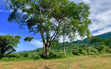 24 ACRES – Ocean View Acreage With Multiple Building Sites And River Running Through It!!!!