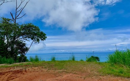 1.9 ACRES – Epic Ocean View Lot Located In Gated Community With Tennis Courts, Gym, Heli Pad!!!