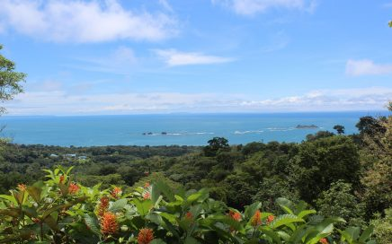 1.85 ACRES – Incredible Ocean View Property With 3 Building Sites In Gated Community!!!!