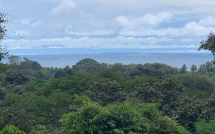 5.3 ACRES – Easy Access Commercial And Residential Property With Ocean Views!!!!