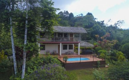1 ACRE – 2 Bedroom Ocean View Home With Pool At Higher Elevation!!!!