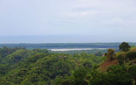 54 ACRES – Ocean And Mountain View Acreage With Spring And River And Endless Potential!!!!